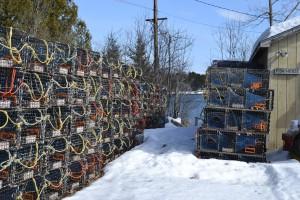 Frozen Lobster Traps