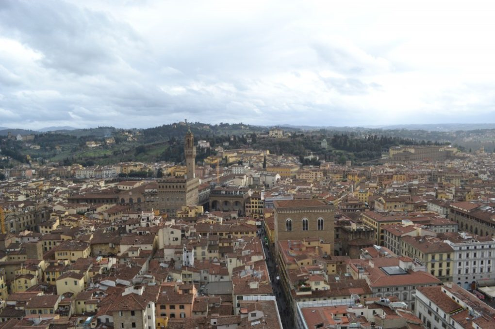Towers view of Firenze