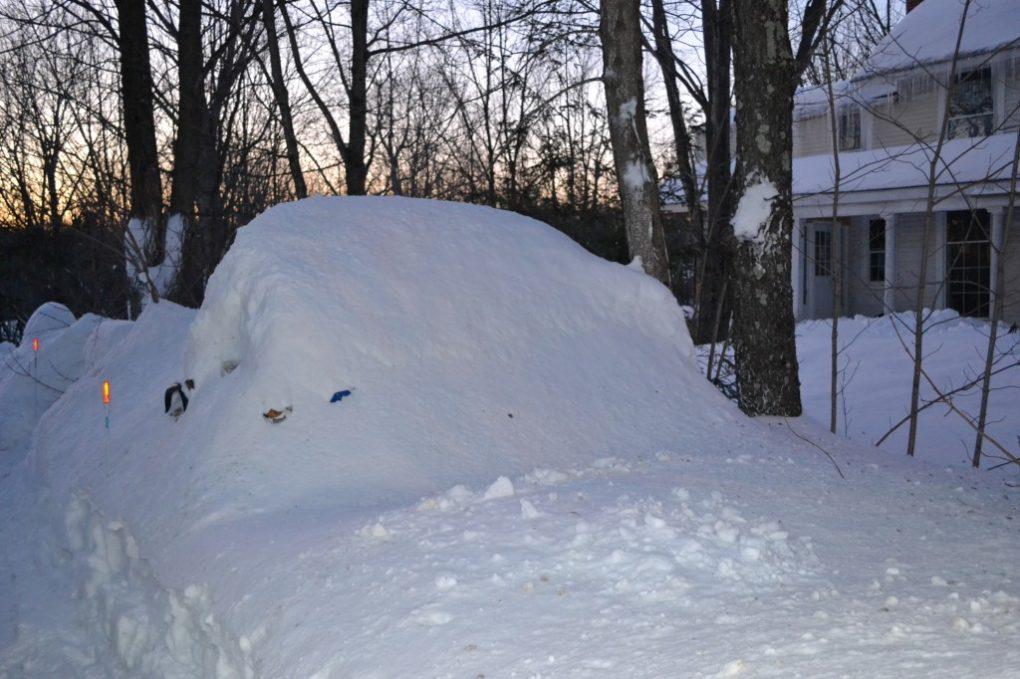 Snow 045